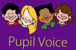 Pupil Voice