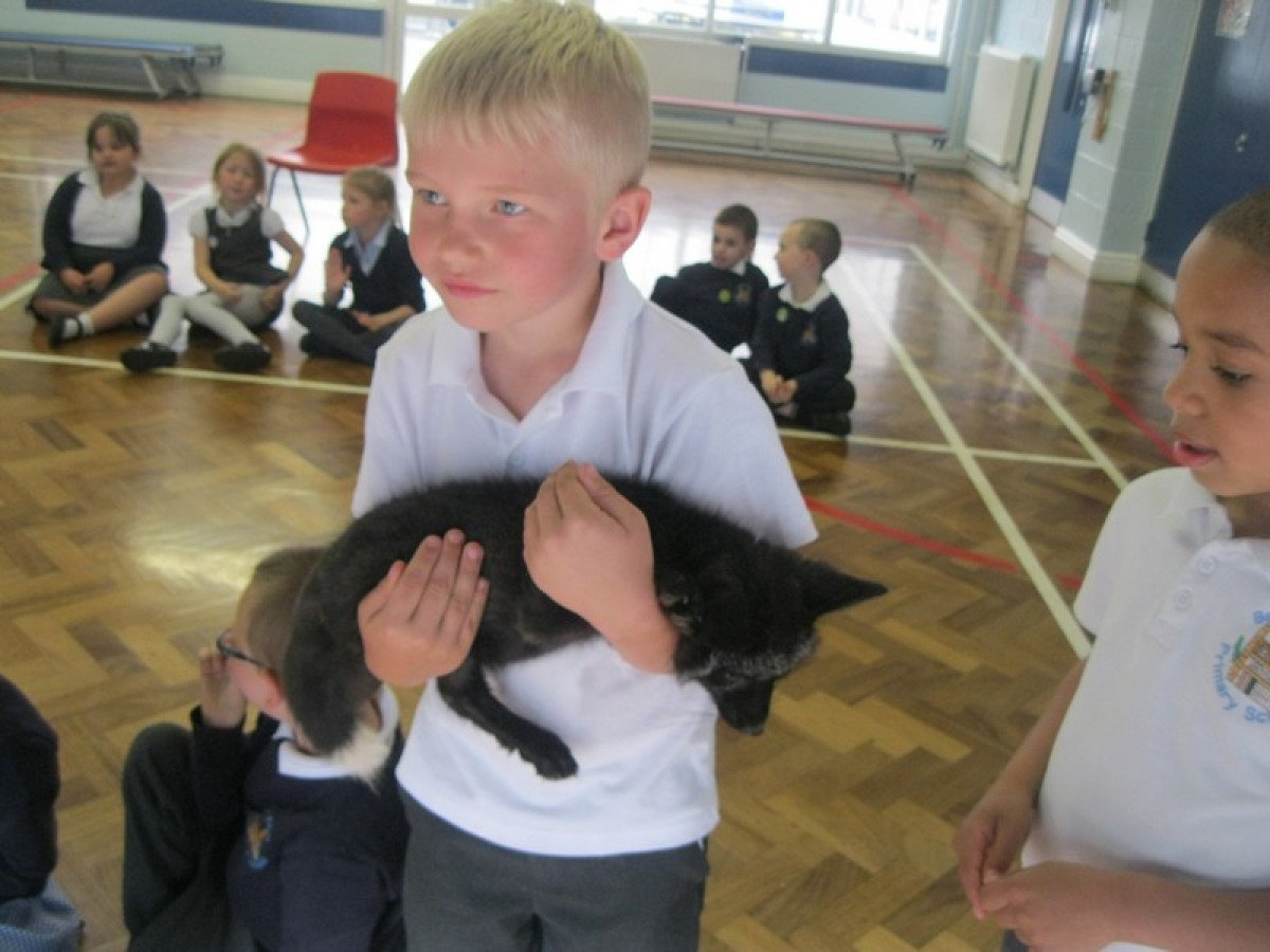 Animal Man visits Early Years and Year 1