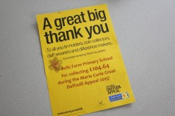 Thank you for the Marie Curie fundraising