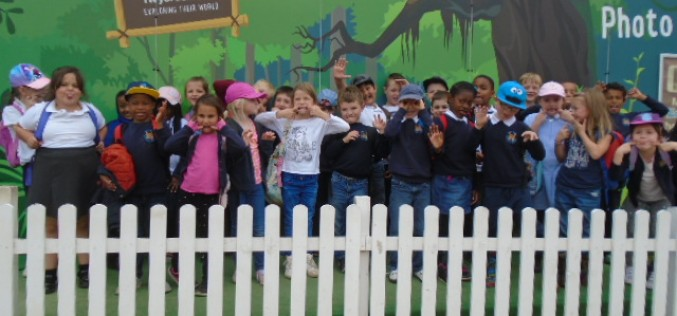 Photos of Year 2 at Twycross Zoo