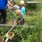 Reception Swans visit Eco Centre
