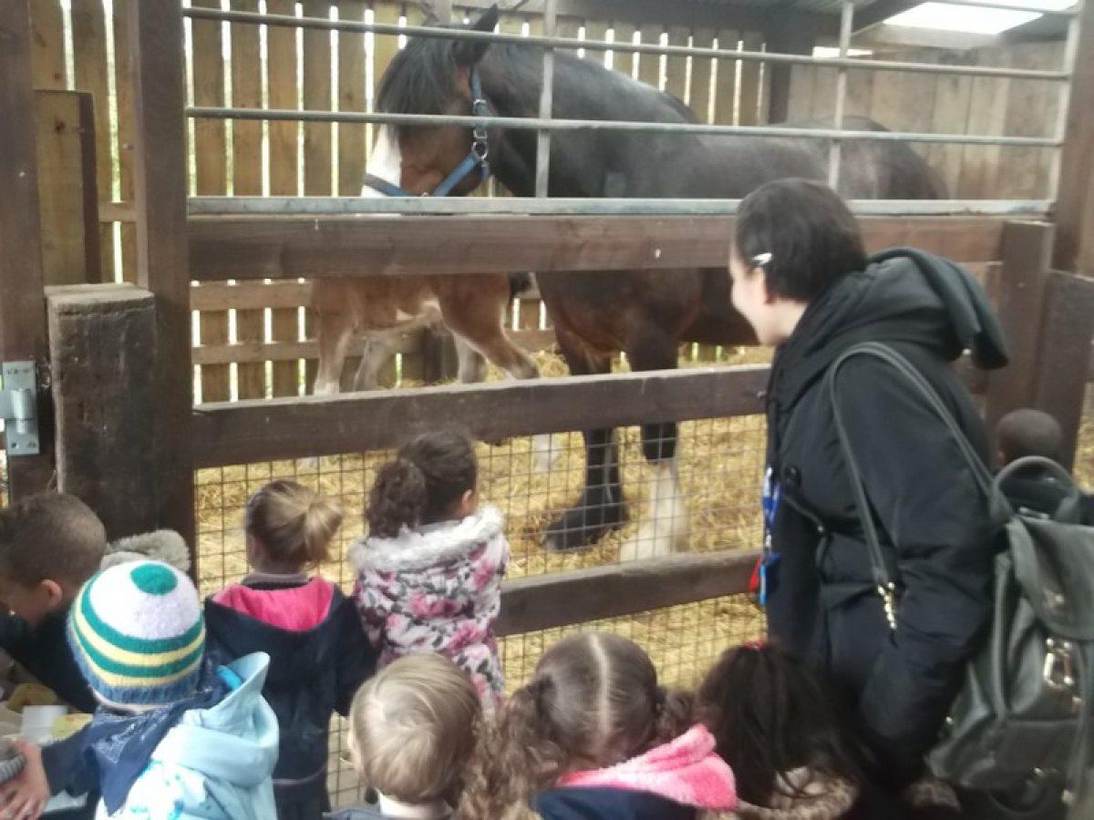 Nursery's trip to Ash End House Farm