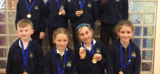 Year 5 & 6 win Swimming Gala