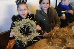Photos of Year 5 trip to Morrells Wood Farm
