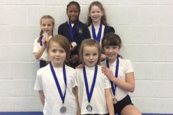 Gold and silver in gymnastics tournament